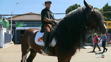 Cavalos da raça bretão chamam atenção do público na ExpoLondrina - Os cavalos chamam atenção pelo tamanho e beleza. Eles vieram de Sorocaba (SP).