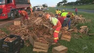 Acidente com caminhão de mandiocas interdita trecho da Rodovia Zeferino Vaz em Paulínia - O motorista perdeu o controle e sofreu ferimentos leves. A pista ficou completamente bloqueada por mais de três horas por conta da carga espalhada.
