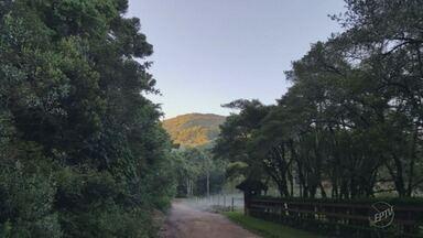 Temperatura chega a 4 graus negativos no Parque do Itatiaia, na divisa de MG com o RJ - Temperatura chega a 4 graus negativos no Parque do Itatiaia, na divisa de MG com o RJ