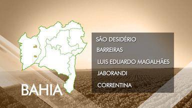 Bahia é o quinto estado que foram descobertos casos de trabalho escravo no país - O dado é um reflexo dos 130 anos da abolição da escravatura.