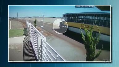 Acidente com duas mortes pode ter sido causado por abelhas - O motociclista teria tentado desviar de um enxame e atingiu um ônibus na pista contrária