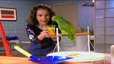 Aquele do Papagaio