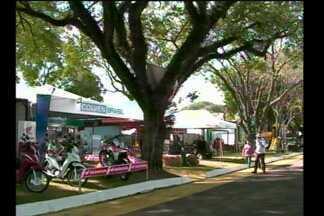A Fenasoja movimenta o parque de Exposições e a economia de Santa Rosa - Hotéis lotados e expectativa de vendas na feira.