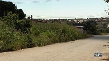 Moradores reclamam de mato alto no Bairro Cardoso 2, em Aparecida de Goiânia - Falta de roçagem tem provocado insegurança no setor.