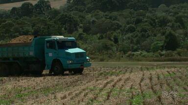 Lodo de esgoto vira adubo para produtores rurais em Guarapuava - Material é rico em nutrientes que aumenta o rendimento na agricultura