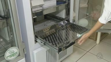 """Falta vacina contra a gripe na rede pública em cidades do noroeste paulista - Está faltando vacina contra a gripe na rede pública de saúde em várias cidades da região. Em Santa Fé do Sul (SP), a situação é mais complicada porque a cidade tem 20 moradores com H1N1 e um com influenza """"B""""."""
