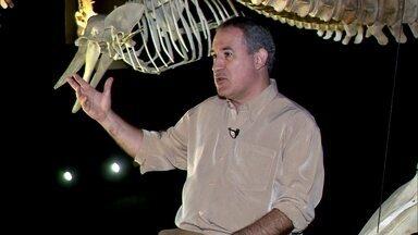 Conheça o homem por trás do Museu Oceanográfico de SC