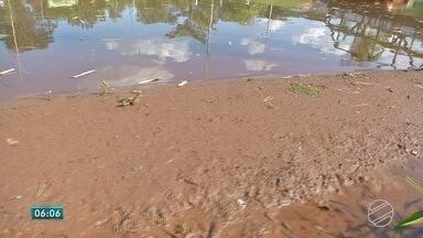 Lago do Parque das Nações Indígenas, em MS, está assoreando - Água de um dos cartões postais de Campo Grande tem perdido espaço para areia. Especialista fala sobre o assunto.