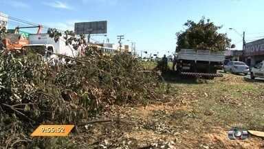 Anhanguera Notícias: Árvores são cortadas para construção de viaduto na Avenida São Paulo - Veja todos os destaques do boletim.