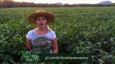 Saiba como participar do projeto Brasil que eu Quero - Saiba como participar do projeto Brasil que eu Quero