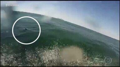 Marcello fez imagens de tubarão em praia do Rio de Janeiro - Vídeo surpreendeu porque tubarões dificilmente são avistados na orla carioca