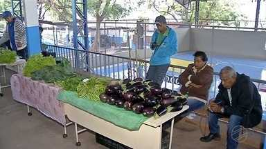 Feira de produtos agroecológicos da UFMS oferece produtos saudáveis para Corumbá - Venda dos produtos também gera renda para as famílias que vivem no assentamento 72, em Ladário.
