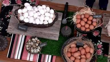 Casal de Salvador criou o sistema de assinatura de ovos - Perlla e Leonardo vendem 90 mil ovos por mês pela internet