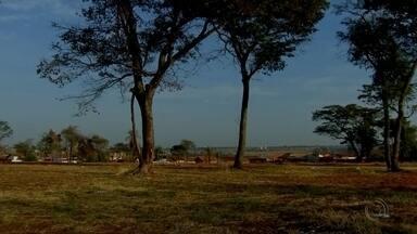 Bairro de Rio Preto irá receber o TEM Mais Verde neste sábado - Rio Preto vai ganhar uma área de preservação ambiental na zona norte. Esse trabalho vai começar no sábado, com o TEM Mais Verde. Uma iniciativa da TV TEM em parceria com a prefeitura.