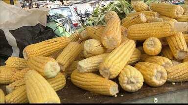 Veja quanto está custando a mão do milho no mercado Central em João Pessoa - Nesse período a procura pelo milho aumenta.