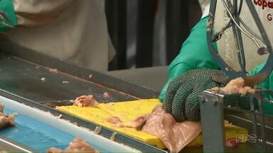 China impõe novas taxas ao frango brasileiro e agrava os prejuízos do setor - A estimativa é de um prejuízo milionário para as empresas brasileiras.