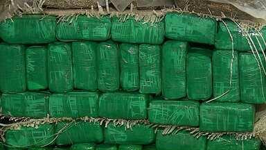 Denúncia anônima leva polícia a encontrar mais de 150 quilos de maconha - A droga estava escondido em uma casa em Ponta Grossa.