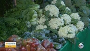 Veja frutas, verduras e legumes mais em baratos nas feiras de Ribeirão Preto - Milho verde, laranja, alface e rúcula são alguns desses alimentos.