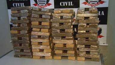 Polícia Civil apreende 100 quilos de maconha em casa no bairro Ipiranga em Ribeirão - A droga estava dividida em tabletes e pronta para ser vendida.