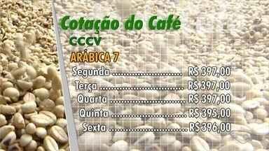 Confira a cotação de café no Espírito Santo - Veja como que o mercado do café fechou a semana