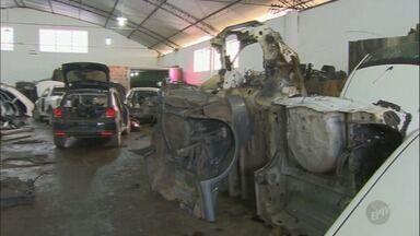 Polícia Civil de Americana descobre operação de desmanche em Limeira - O galpão tinha mais de 50 carros desmontados.