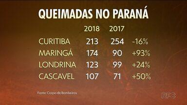 Número de queimadas aumenta no Paraná - Tempo seco colabora para este índice mais alto.
