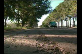 Carro movido pela energia solar circula pelas ruas de Santa Rosa - Veículo representa economia para o bolso do motorista.