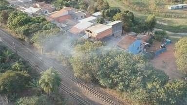 Número de queimados dobrou em comparação ao ano passado - Tempo seco contribui para aumento do número de queimadas da região. Bitucas de cigarro e terrenos com lixo também contribuem para incêndios.