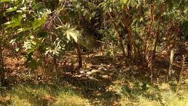 Polícia Civil identifica mulher encontrada morta - Caso foi registrado em Santo Anastácio.