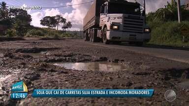 Motoristas e moradores reclamam da falta de manutenção da BA-528, em Paripe - Os grãos caem na pista e causam mau cheiro para quem mora na região da pista.