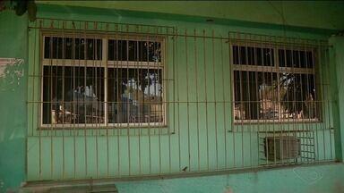 Dona de casa conta o que passou após bala perdida atingir residência em Cachoeiro, ES - Bala foi disparada por agente penitenciário na tentativa de conter detento.