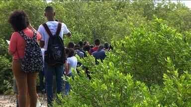 Estudantes de Aracaju participam de projeto para proteção dos manguezais - Dia 26 de julho é comemorado o Dia Mundial de Proteção aos Manguezais.