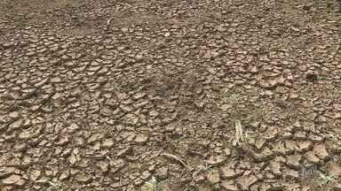 Rio das Pedras começa racionamento de água nesta segunda-feira (30) - Com tempo seco e consumo alto, as represas estão com pouca água.