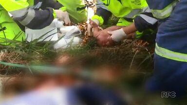 Bebê que sobreviveu a acidente retorna à família no Paraná - Recém-nascida ficou internada em Cajati, interior de São Paulo. A mãe da criança morreu no acidente.