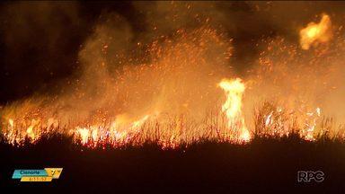 Incêndio perto de rodovia assusta moradores - Vários focos foram registrados na BR-277, em São José dos Pinhais