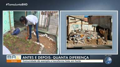 Bom exemplo: moradores de Capelinha de São Caetano criam horta em antigo terreno baldio - Conheça a iniciativa que está mobilizando dezenas de pessoas e pode ser aplicada também na sua comunidade.