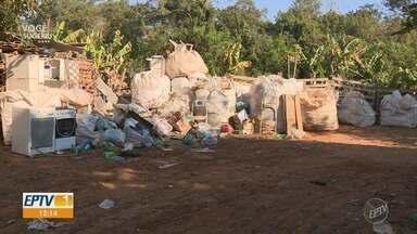 Moradores juntam entulhos e criam animais em ocupação de Santa Bárbara d'Oeste - Área é de preservação permanente, ao lado do Ribeirão dos Toledos.