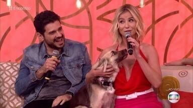 Barbara França apresenta sua filhota canina, Valentina - Atriz conta que adotou a cachorrinha de uma ONG