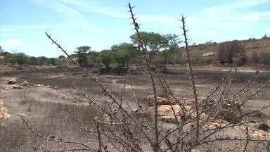 G1 no Campo: moradores de Anagé sofrem com reflexos da seca há 7 anos - A retirada dos 24 carros-pipa piorou a entrega de água nas localidades.