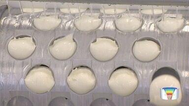 Empresários da região investem na produção de leite e queijo de búfala - Produtos, que têm menos gordura, conquistam o consumidor.