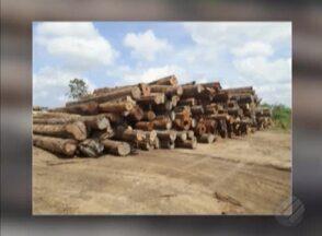 Semas emite autos de infração contra madeireiras no Pará - Madeira apreendida equivale a 65 caminhões carregados.