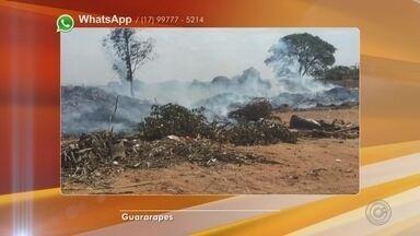 Moradores reclamam de incêndios em ecoponto de Guararapes - Um ecoponto no bairro Vila Medeiros, em Guararapes (SP), pegou fogo neste fim de semana. Os moradores reclamam que é frequente o local pegar fogo. Em nota, a prefeitura informou que já está adequando os três ecopontos da cidade.