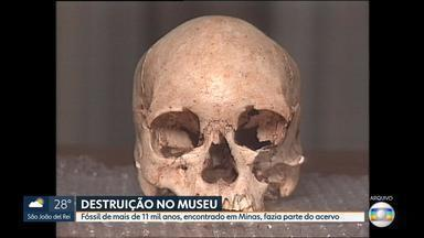 Fóssil de mais de 11 mil anos encontrado em MG faz parte do acervo do Museu Nacional - Acervo pegou fogo na noite deste domingo no Rio de Janeiro. Paleontólogo Cástor Cartelle lamentou a perda para a ciência.