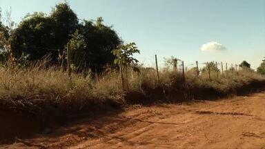 Hectares de vegetação queimados em Timóteo diminuiu em 2018 - Tudo por conta de um projeto de controle.
