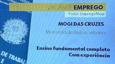 Confira as vagas de emprego no Alto Tietê - PATs e Programas de Encaminhamento têm juntos mais de 450 vagas nessa semana.