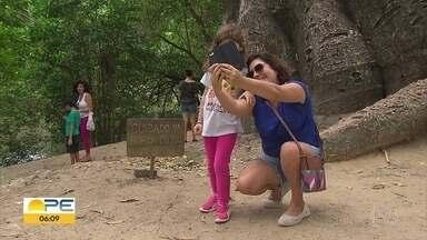 Jardim do Baobá completa dois anos - Programação reuniu famílias na Zona Norte do Recife