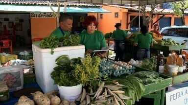 Feira de produtos agroecológicos passa a ser diária no Jaraguá - Boa aportunidade para quem gosta de alimentação orgânica.