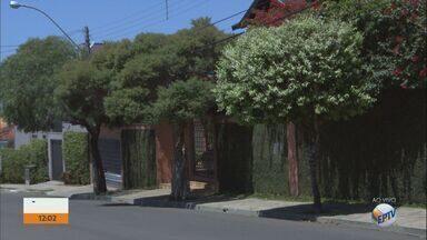 IPTU Verde dá descontos a moradores que têm jardim ou árvores em imóvel em São Carlos - Cadastros no programa podem ser feitos até 15 de outubro.