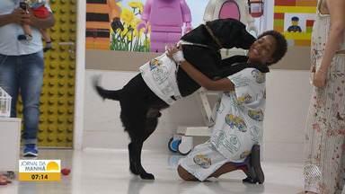 Bom Dia Sábado: programa traz reportagem especial sobre cães terapeutas - Os animais são preparados para ajudar crianças no processo de cura.