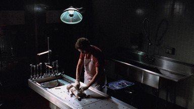 Maternidade - Quando um vírus se espalha pelo hospital e infecta seis bebês, Dr. House e sua equipe devem tomar importantes decisões.